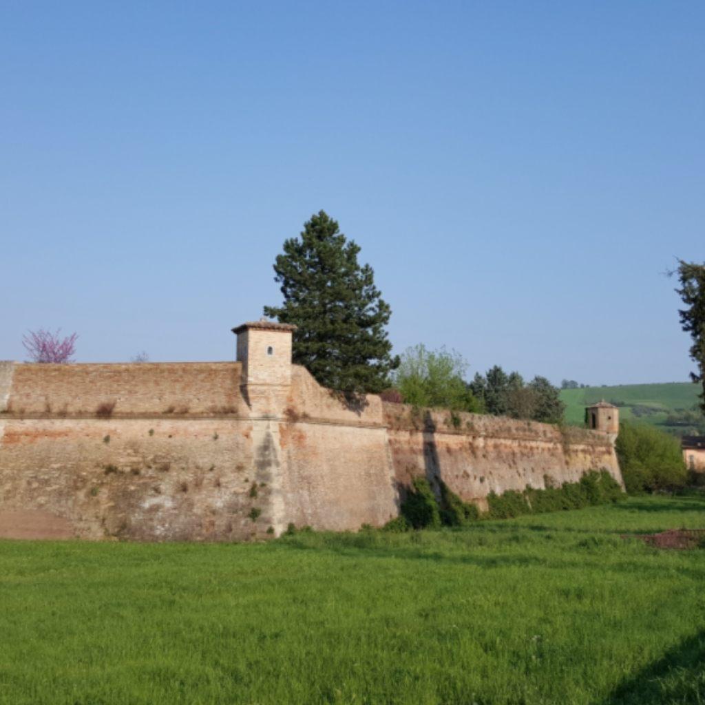Da Faenza alla città ideale di Cosimo De' Medici